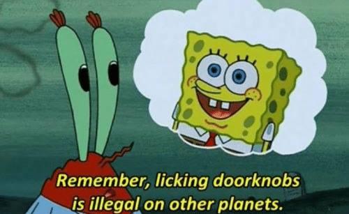 kata-kata spongebob lucu