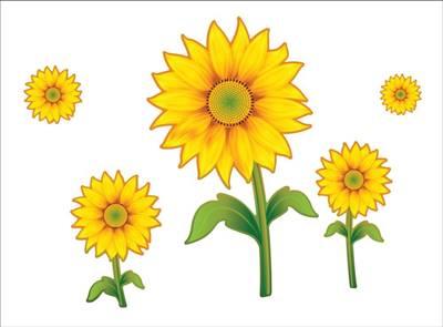 75+ Gambar Bunga Versi Kartun Terlihat Keren