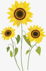 53+ Gambar Animasi Kartun Bunga Matahari Kekinian